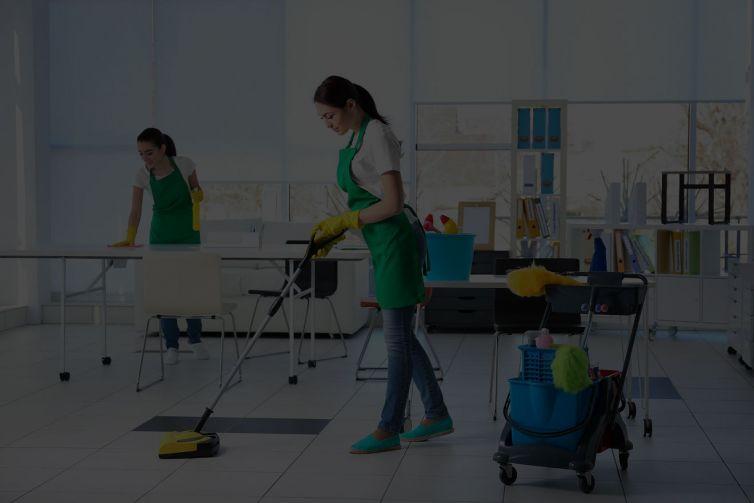 Usluge čišćenja i održavanja<br/><h5>stanovi, kuće, vile, poslovni prostori, apartmani</h5>